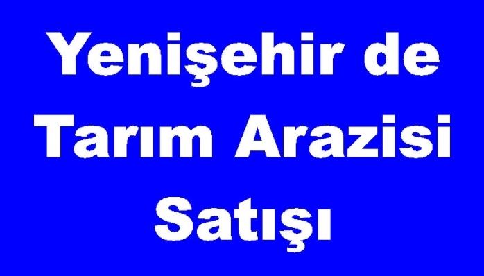 Yenişehir de Tarım Arazisi Satışı