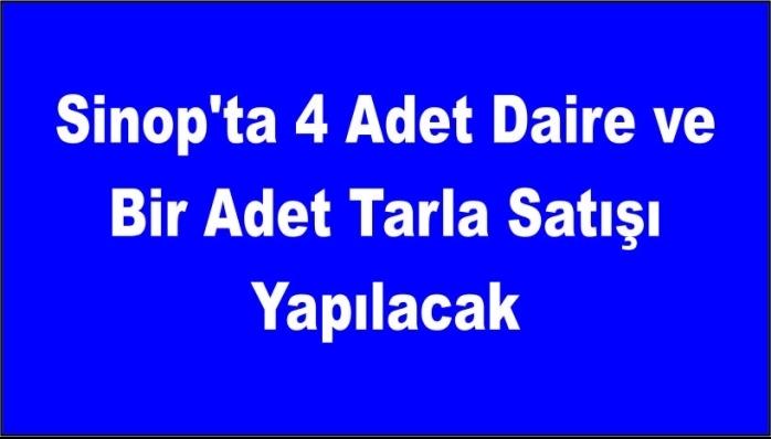 Sinop'ta 4 Adet Daire ve Bir Adet Tarla Satışı Yapılacak